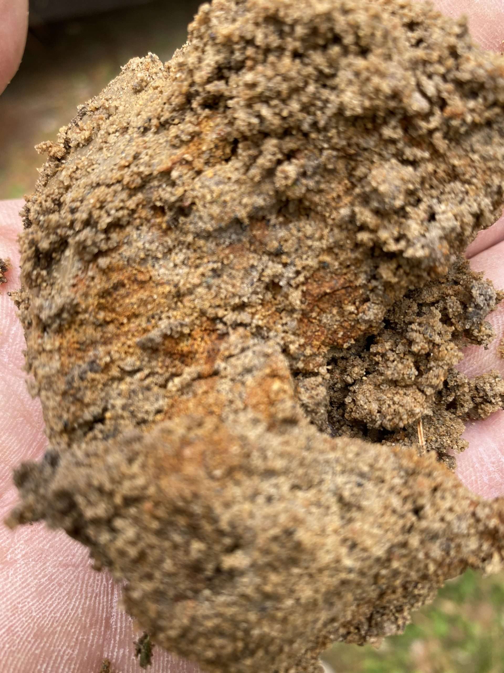 Evaluating Dirt for Septic
